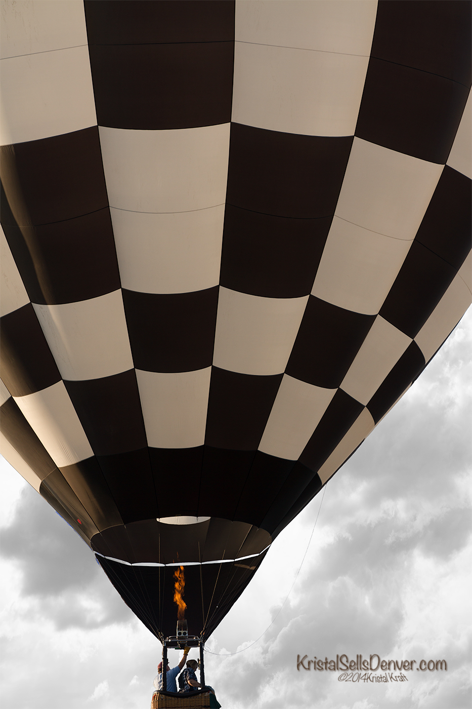 Black and white hot air balloon