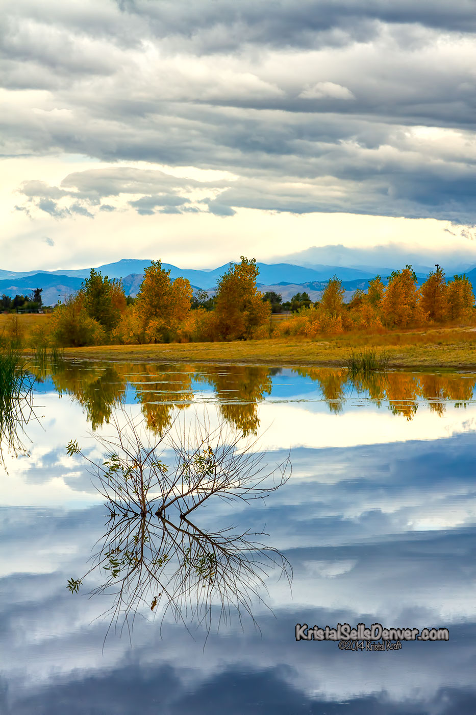 Clouds reflecting in a pond with Rocky Mountains behind fall leaves