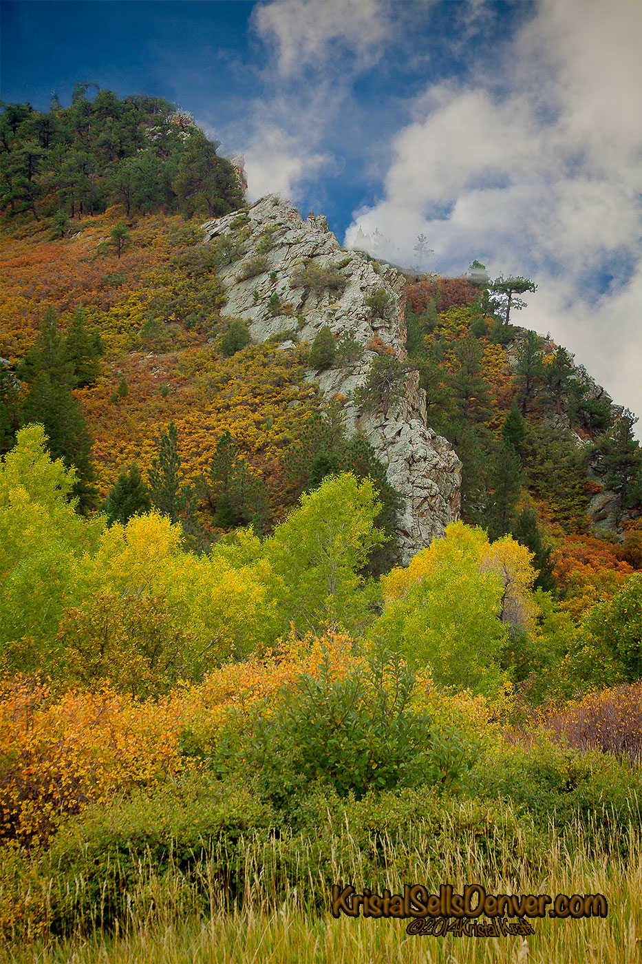 Fall color at Roxborough park, Colorado