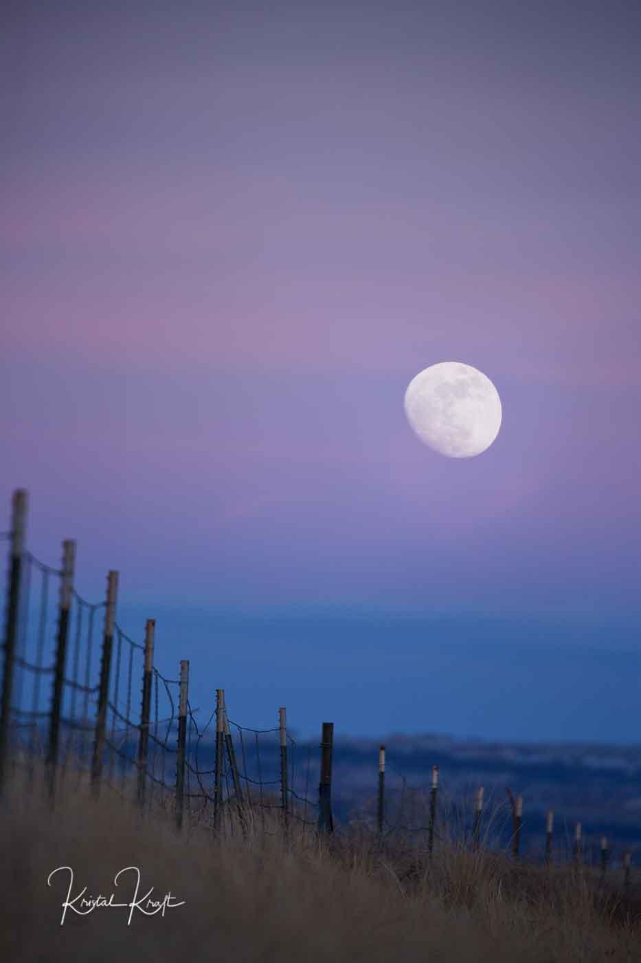 Full Moon on Hess Road